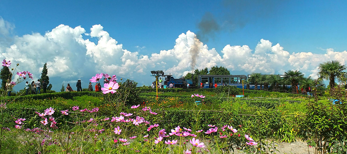 Destination – Darjeeling