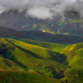 DZOUKU VALLEY – NAGALAND