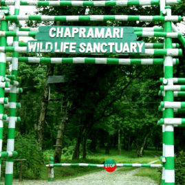 CHAPRAMARI WILDLIFE SANCTUARY